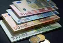 欧银执委提名人:德国同行对欧央行的批评威胁到欧元