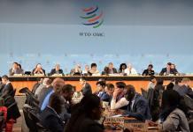 WTO躲过关门风险 上述机构却铁定停摆